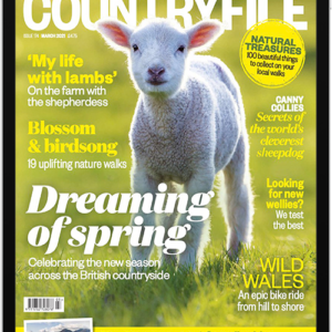BBC Countryfile Digital Magazine Subscription