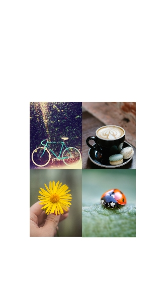 Four Collage Photo Apple iPhone 12 Pro Max Case, Gifts White