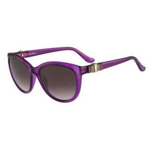 Salvatore Ferragamo Sunglasses SF760S 539