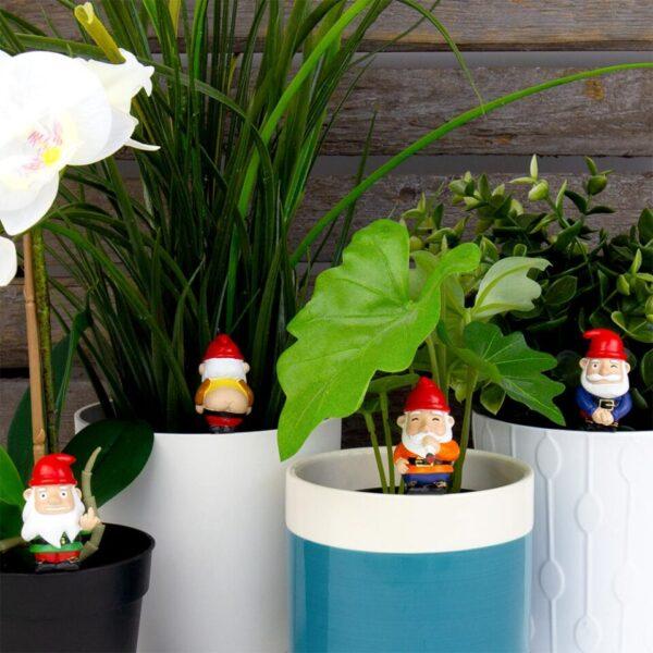 Mini Plant Pot Naughty Gnomes - Set of 4
