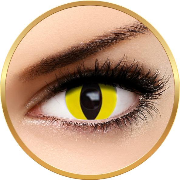 Fantaisie Yellow Cat - lentile de contact Crazy pentru Halloween anuale - 365 purtari (2 lentile/cutie)