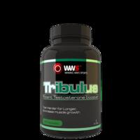 Tribulus Terrestris Capsules (40% Saponins) Refill Pack